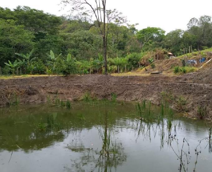 Sítio com frutíferas, lago, nascentes e riacho 21.000m2