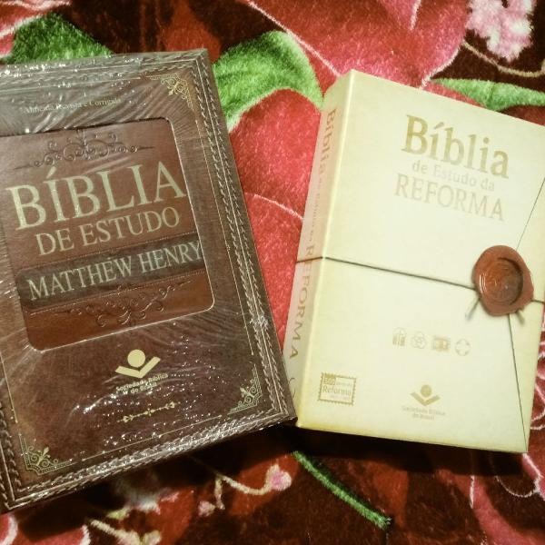 Bíblias de estudos sbb