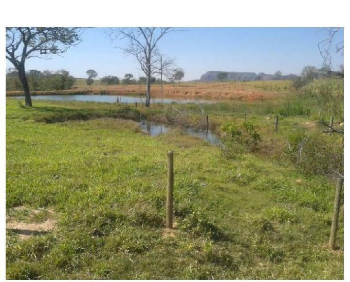 53 alq. rica em água estuda 40% em imóveis cercas piquetes