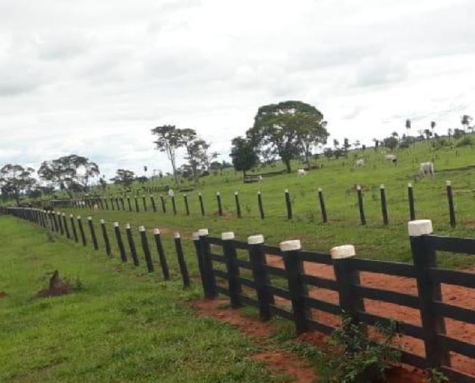 Excelente fazenda com 180 alqueires em anaurilândia ms