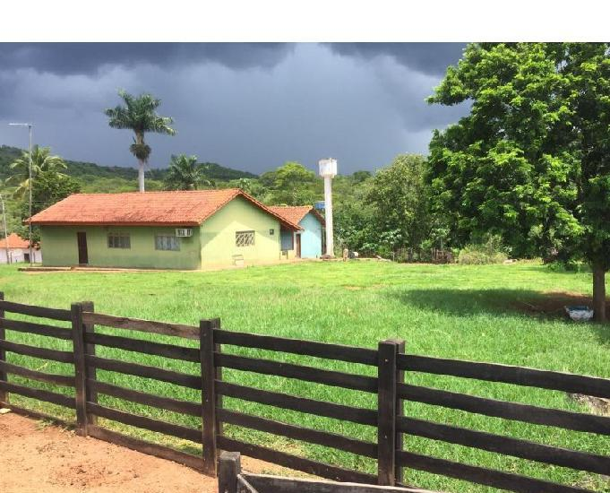 Excelente propriedade em niquelândia-go fazenda com 65