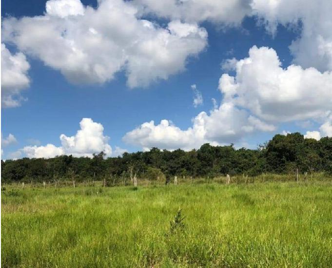 Fazenda em anaurilândia ms 320 alqueire paulista