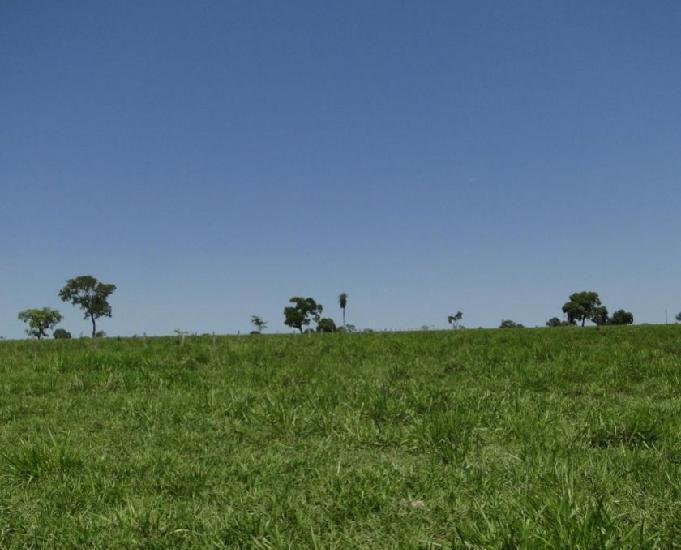 Oportunidade de fazenda com 2.500 hectares em aquidauana ms