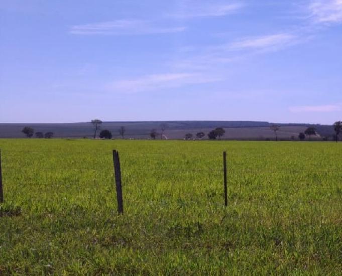 Excelente fazenda com 3.327 hectares santa rita do pardo ms