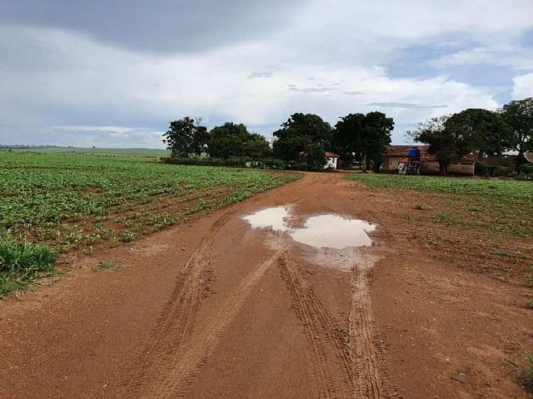 Fazenda em lavoura (distrito de almeida campos )