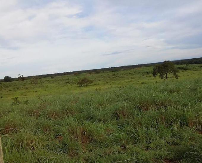 Fazenda a venda vale araguaia to