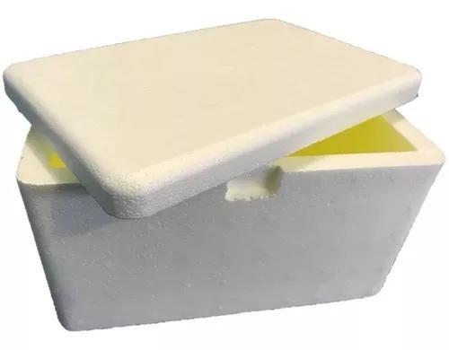 Caixa térmica de isopor capacidade 05 litros isoterm s/