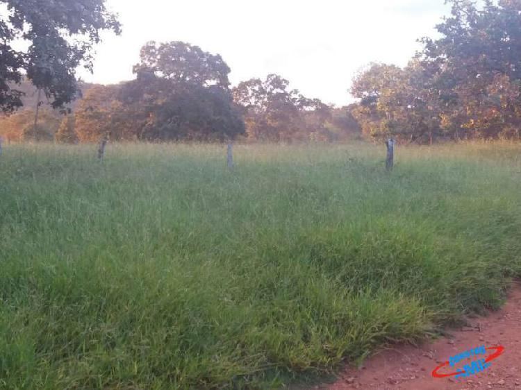 Fazenda 181 alqueires santa cruz de goias