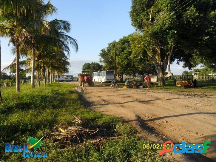 Fazenda em santo andré (bahia) ref 313