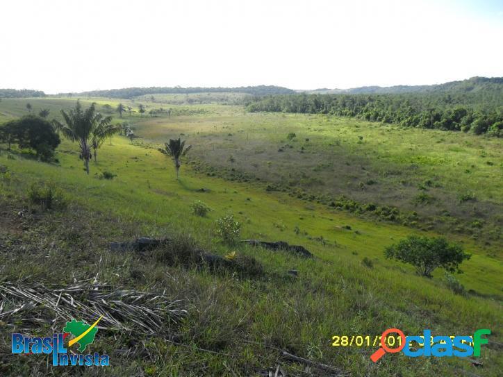 Fazenda em Santo André (Bahia) REF 313 2
