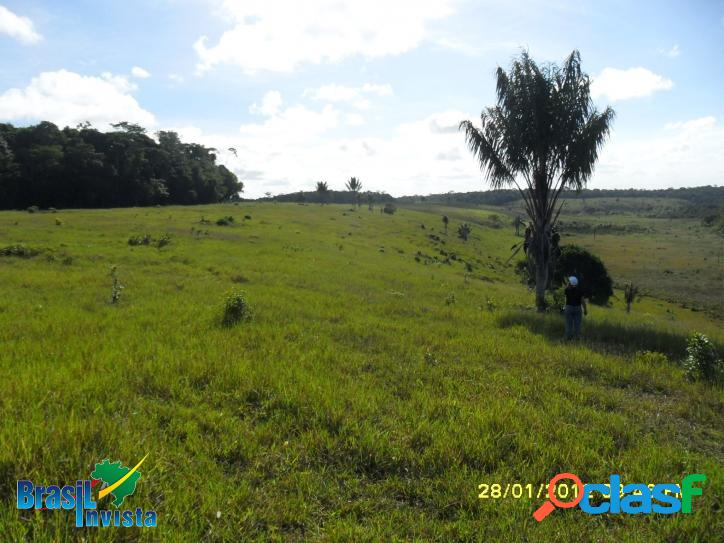 Fazenda em Santo André (Bahia) REF 313 3