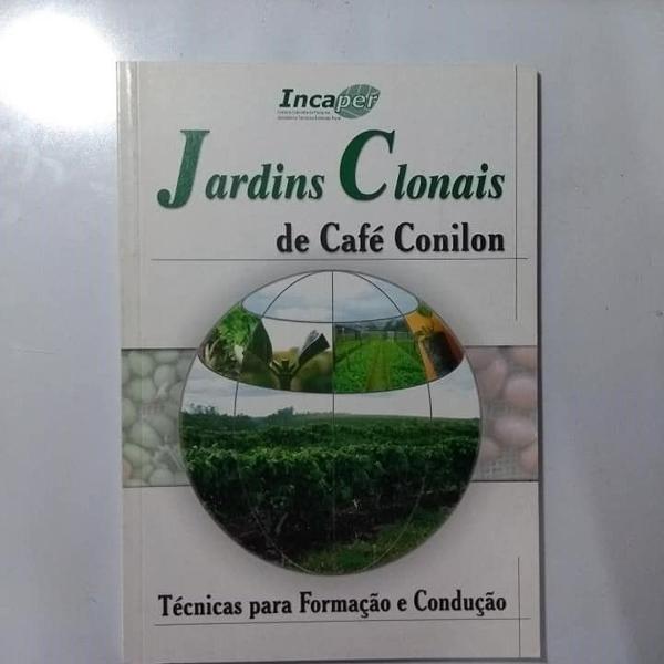 Jardins clonais de café conilon