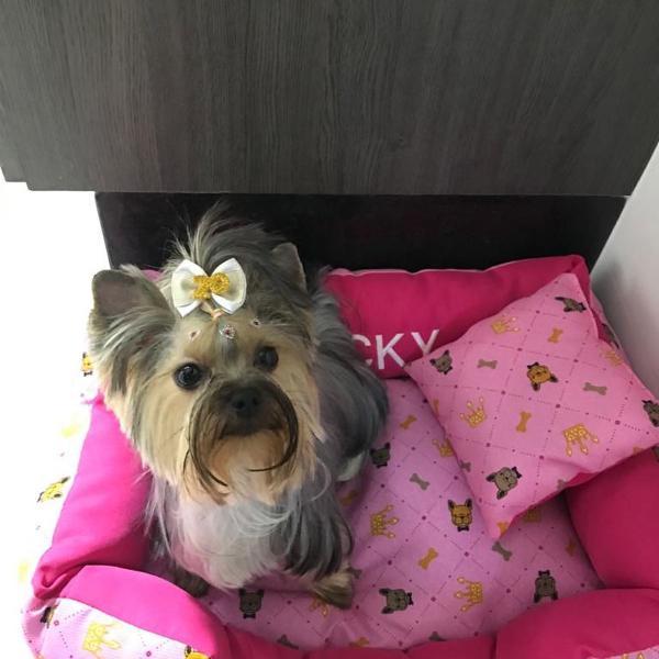 Cama pet cão e gato com nome bordado e almofada (50x32cm)