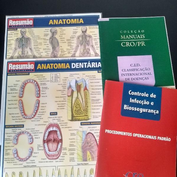 Kit resumo anatomia geral e dental