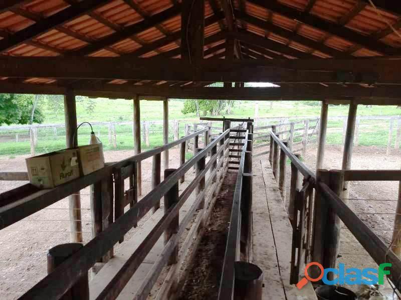 388 Alq. Cultura Montada Margeada Por Rio e Córregos Pires Do Rio GO 2