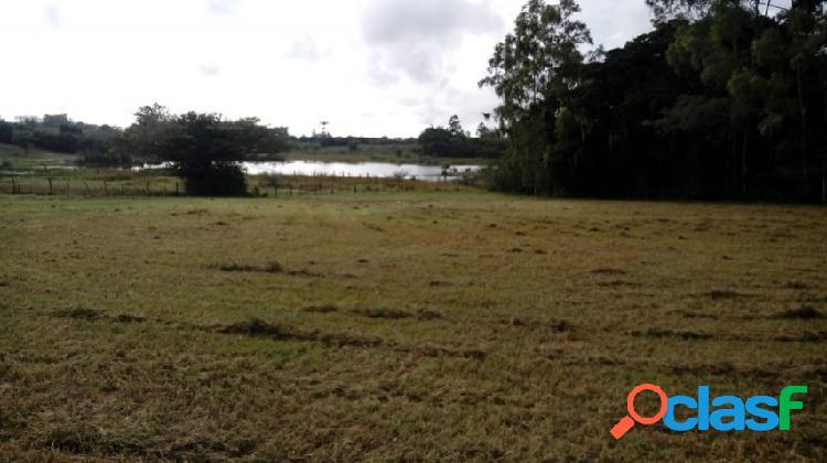 Sitio com 5.536m², mata nativa, lagoa nos fundos, águas claras/ viamão