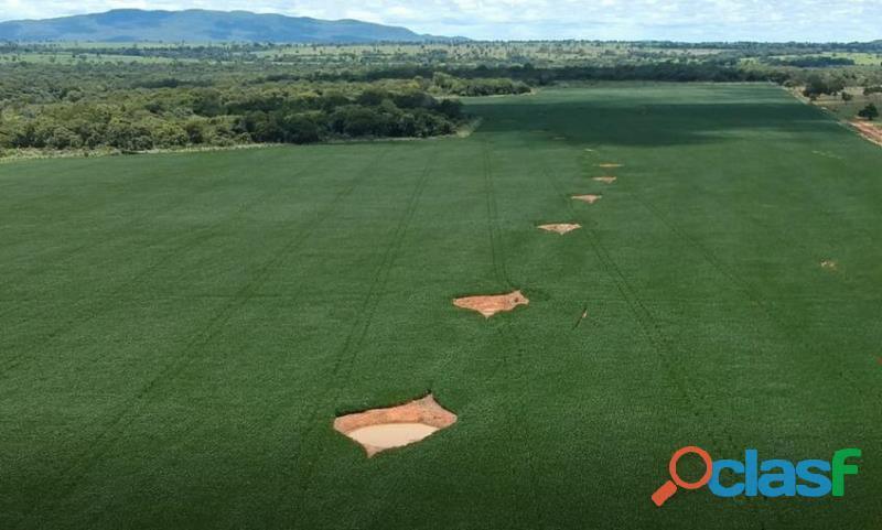 253 Alq. Estuda Prazo e Proposta Terra Plana Vermelha Argilosa 68 Em Soja Planta + 140