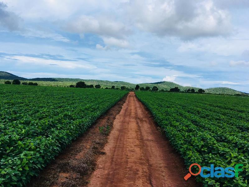 255 Alq. 60 Soja Planta + 140 Argila 35% Estuda Condições e Proposta Montevidiu GO