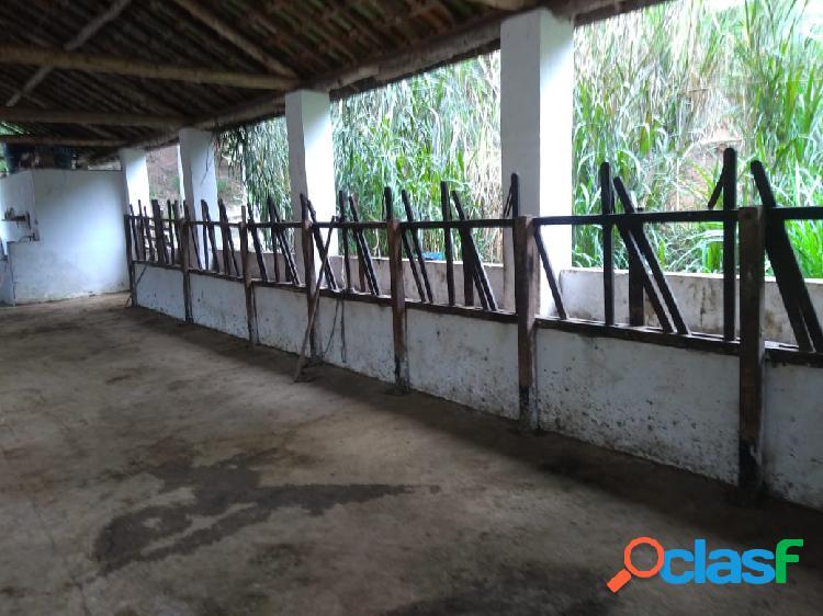 Fazenda 125 alqueires a venda em paraibuna