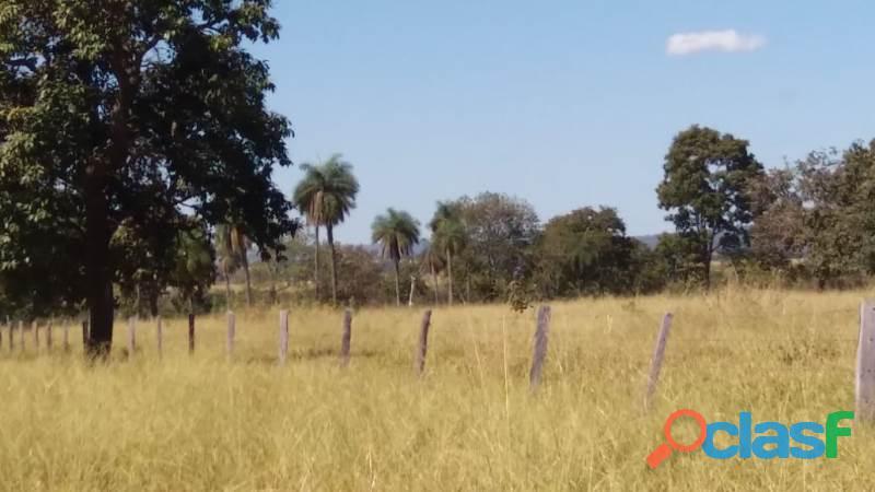178 Alq. Abaixo Do Preço Da Região Cultura Rica Em Água Planas Jussara GO