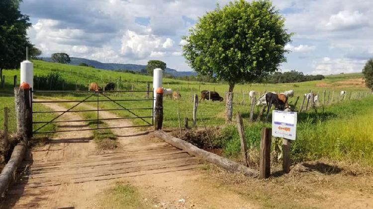 Fazenda/sítio/chácara para venda com 86000 metros