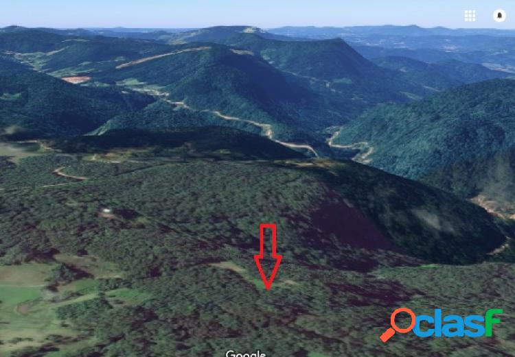 Sítio - venda - rio dos cedros - sc - cedro alto
