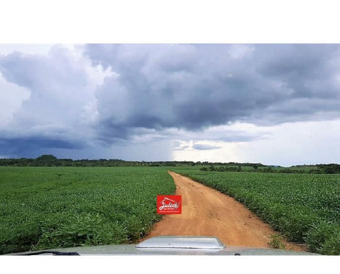 Fazenda agrícola no mt área 1.000 hectares planalto da