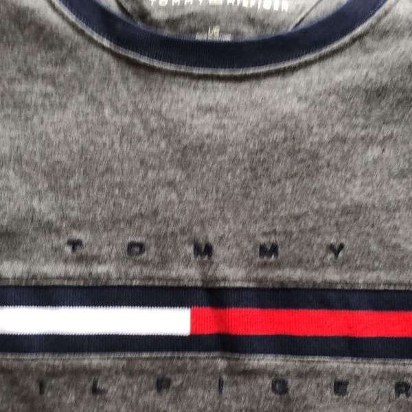 Camiseta tommy masculina g
