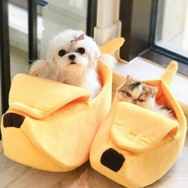 Cama gato cachorro banana