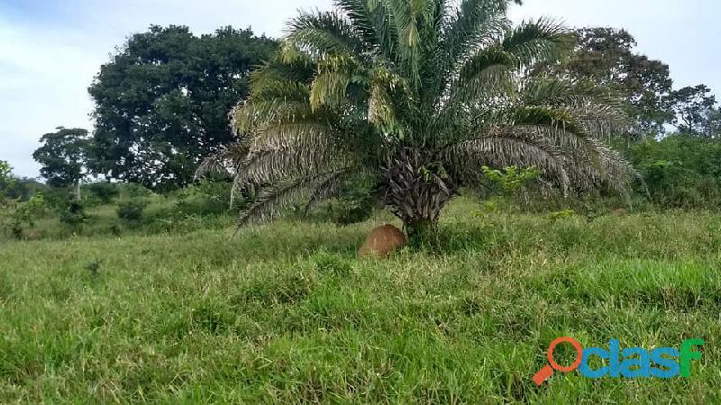 4 Alq. Ótima Para Agricultura Da Irrigação Rio Quente GO 2