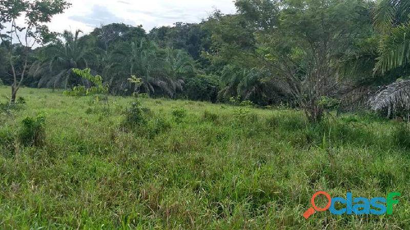 4 Alq. Ótima Para Agricultura Da Irrigação Rio Quente GO 5