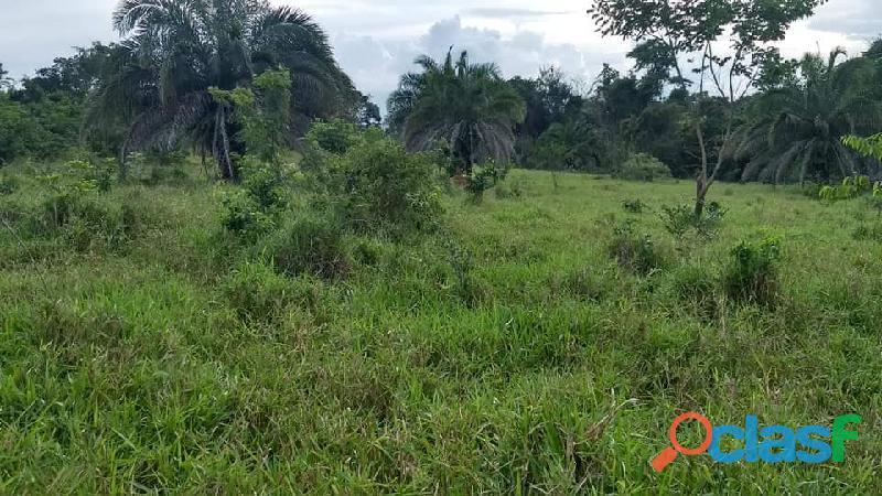 4 Alq. Ótima Para Agricultura Da Irrigação Rio Quente GO 8