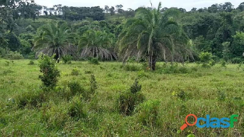 4 Alq. Ótima Para Agricultura Da Irrigação Rio Quente GO 11