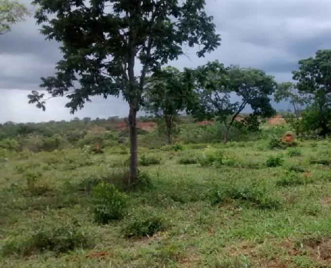 Fazendinha 47 hectares formada - rio margeando