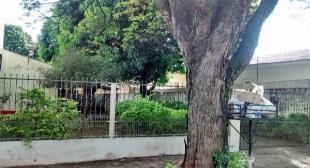Vila santa isabel terreno de 600m2 com 02 casas