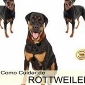Como cuidar de rottweiler
