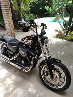 Harley davidson xl 883 r