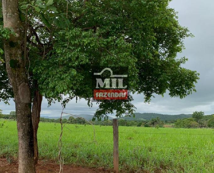 Fazenda 70 alqueires (341 hectares) itapirapuã-go