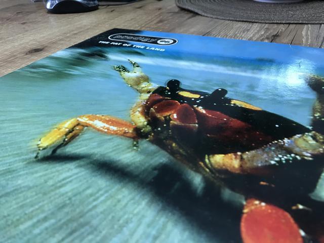 Vinyl prodigy, fat of the land 1997 - duplo * raridade