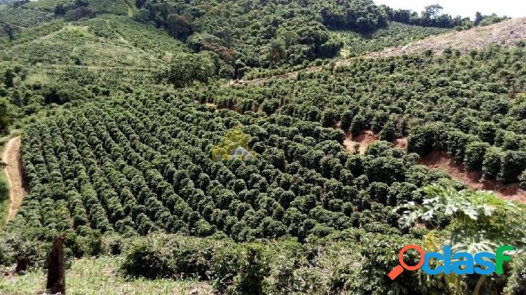 Sítio de 2,8 ha com 7500mil pés de café em nova resende-mg