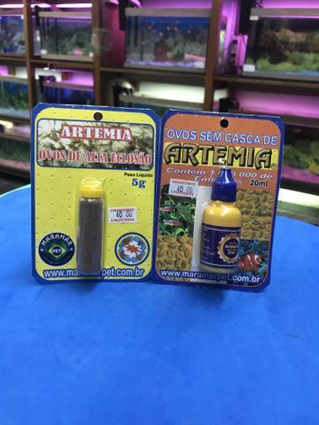 Ovos artemia