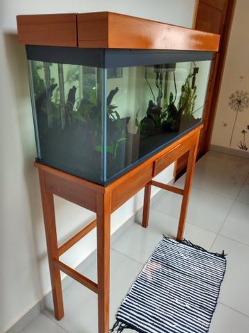 Vendo aquário 100 lts + móvel