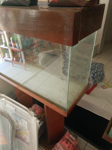 Vendo aquário com móvel com coluna de madeira moguino
