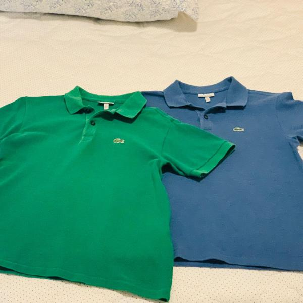 Camisa polo lacoste 14