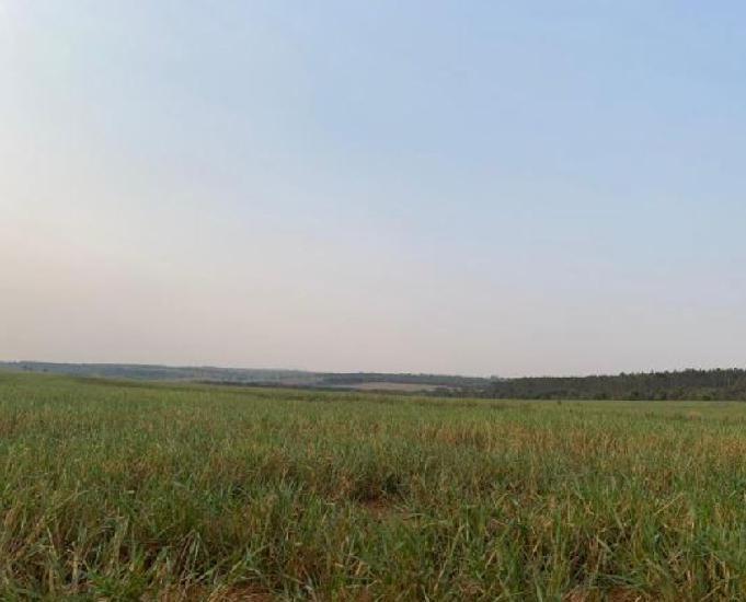 Excelente fazenda com 478 alqueires região de rancharia sp