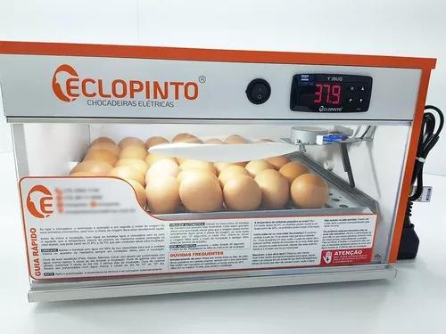 Chocadeira eclopinto 30 ovos, digital, virag