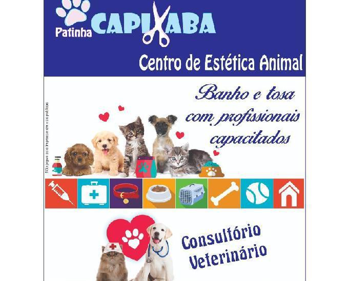 Consultório veterinário -pet shop -banho e tosa