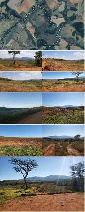 Fazenda no sul de minas - são vicente de minas