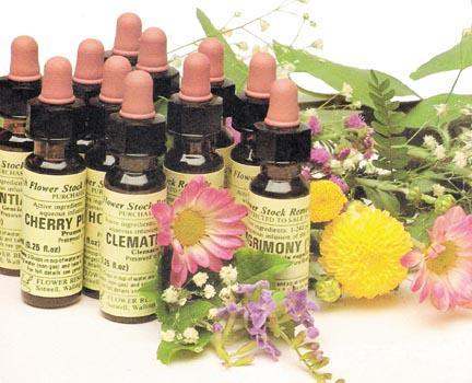 Atendimento terapêutico com florais na tijuca