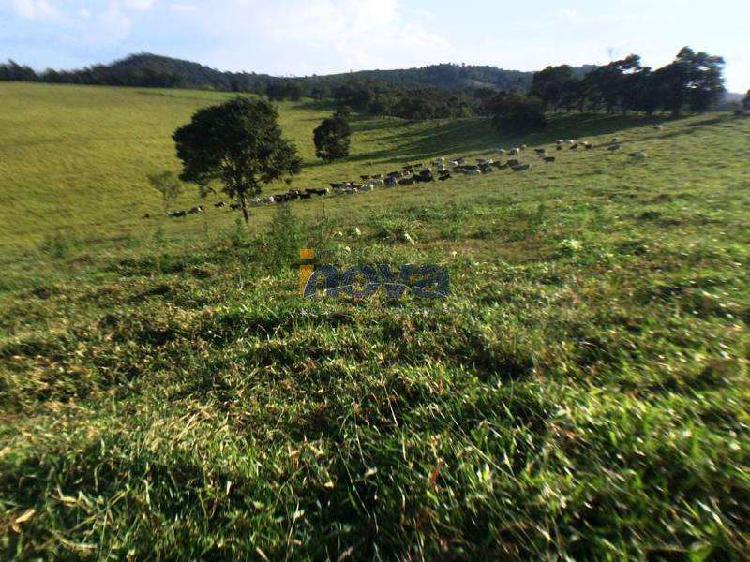 Fazenda, zona rural, 0 quarto, 0 vaga